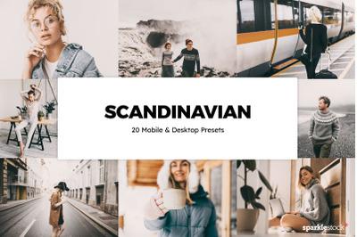 20  Scandinavian LR Presets