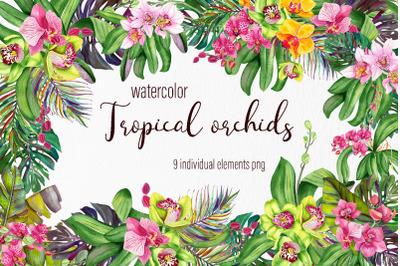 Watercolor orchids bouquet clipart
