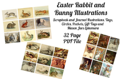 Easter Bunny and Rabbit Vintage Illustrations 1