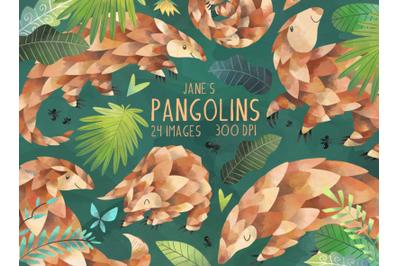 Watercolor Pangolins Clipart