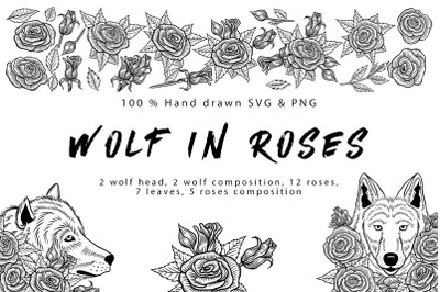 Wolf in roses set 100% hand-drawn