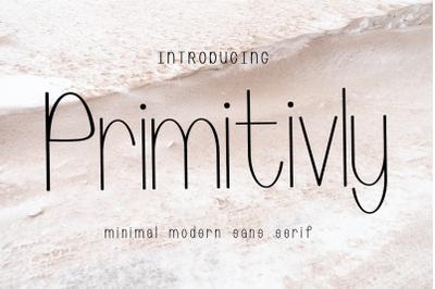 Primitivly Minimal Modern Sans Serif