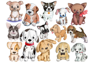 Set of 14 cute dogs and puppies. Watercolor illustrations.
