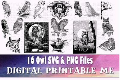 Owl SVG bundle, PMG pack, clip art, 16 Images, Instant Download, Digit