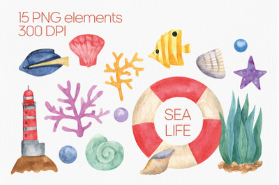 Cute sealife watercolor clipart. Travel clipart PNG