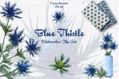 Blue Thistle Watercolor Clip Art!