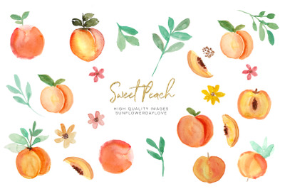 Peach fruit clipart, Watercolor Peach Clipart, Peach leaves