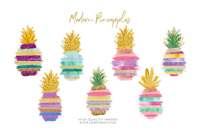 Pineapple Tropical Clip art, Brush strokes,  Hibiscus floral clipart