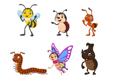 Set of Six Cartoon Insect Character