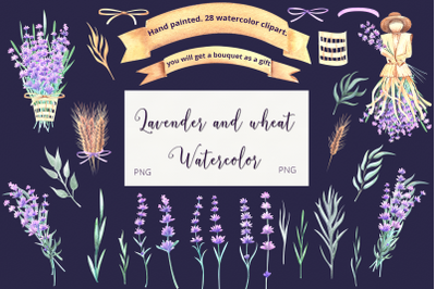 Lavender and wheat. Watercolor clipart.