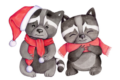 Watercolor illustration of 2 raccoons.