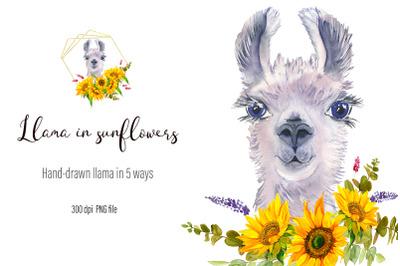 Watercolor Llama Clipart - Sublimation designs