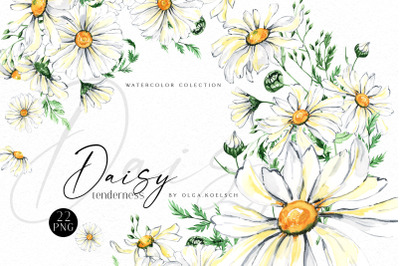 Watercolor daisy clipart, Chamomile bouquets, hand painted daisies png
