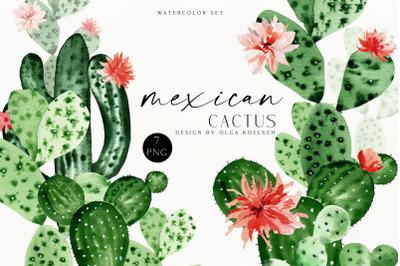 Cactus  watercolor clipart, Cute cactus png. Green succulent clipart. Blooming cactus clip art printable