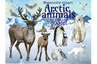 Arctic Animals and birds watercolor clipart,northern animals,.