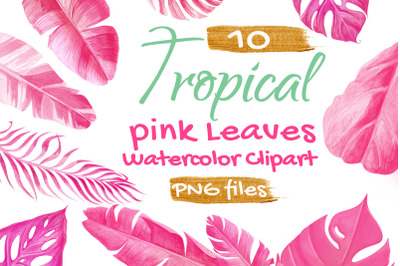 Tropical Palm Leaf Pink Watercolor