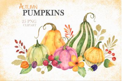 Watercolor autumn pumpkins clipart PNG