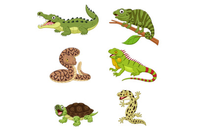 Set of Six Amphibian and Reptile Animals