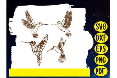 Hummingbird SVG