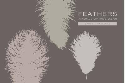 Feathers Graphics Design