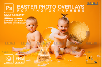 Easter overlays, Baby chicks overlay clipart png