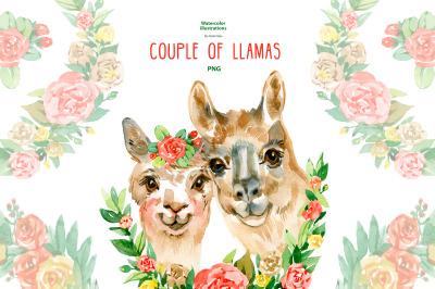 Watercolor llama couple clipart