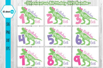 Birthday Dinosaurus Girl Bundle Svg, Dinosaurus Svg, Birthday Gilrs Sv