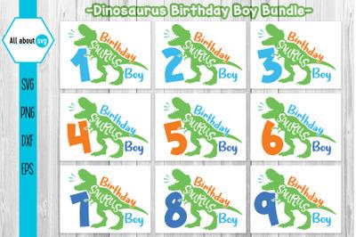 Birthday Dinosaurus Boy Bundle Svg, Dinosaurus Svg, Birthday Boy Svg