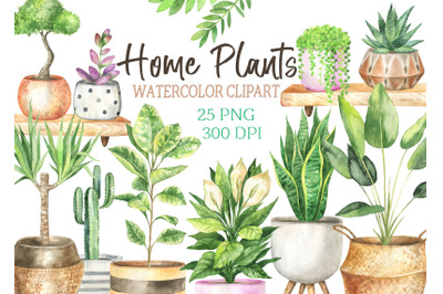 Watercolor Home plants in pots Boho Home Decor Clip Art House Plant