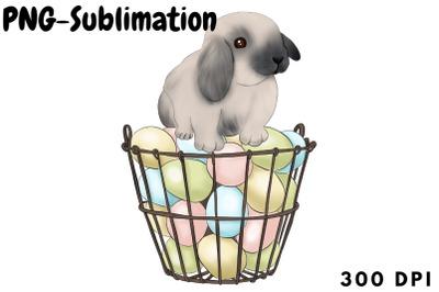 Easter Basket   Rabbit Png Sublimation