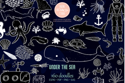 Under the Sea White | Hand Drawn Fish, Ocean Life, Octopus, Shell