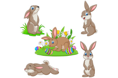 Set of Five Easter Bunny Collection