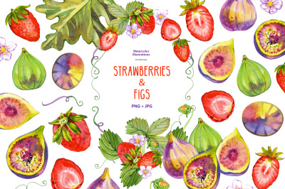 Watercolor strawberries and figs