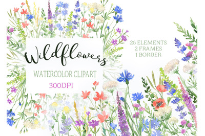 Watercolor Wildflowers clipart botanical floral files flowers clip art