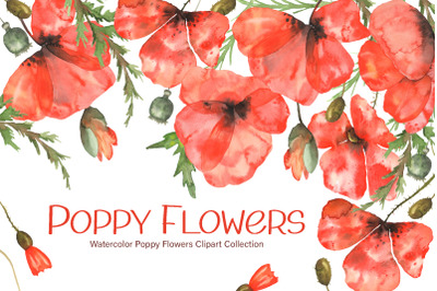 Watercolor Poppy Flowers Collection