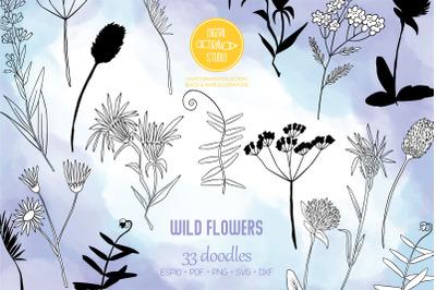 Wild Flowers | Hand Drawn Meadow Plants, Leaves, Fern