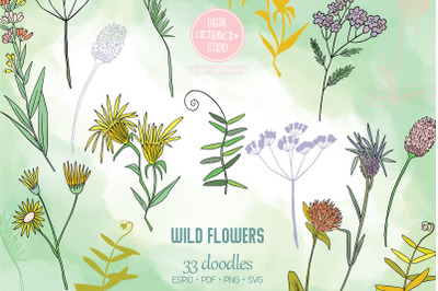 Colored Wild Flowers | Hand Drawn Meadow Plants, Leaves, Fern