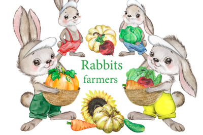 Rabbits farmers watercolor clipart. Bunnies and vegetables, summer