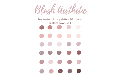 Procreate Blush Aesthetic Colour Palette/ Swatch