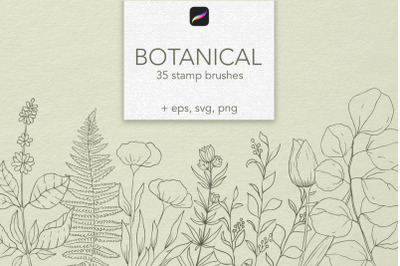 Botanical Procreate stamps, vector clipart