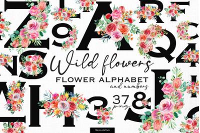 Wild flowers alphabet & numbers