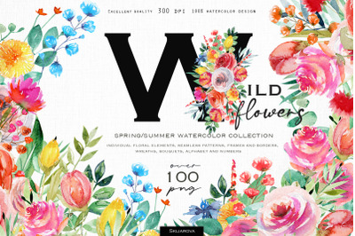 Wild flowers watercolor collection