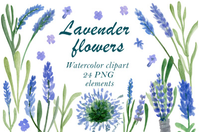 Lavender flowers, Floral clipart, Flower stem clip art