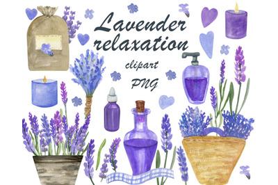 Dried lavender, Watercolor lavender plant clipart