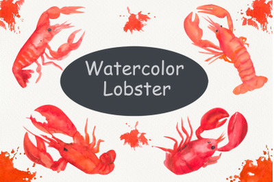 Lobster food clip art, under the sea, watercolor clip art