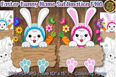 Easter Bunny Holding Wood Board Monogram PNG Clip Art