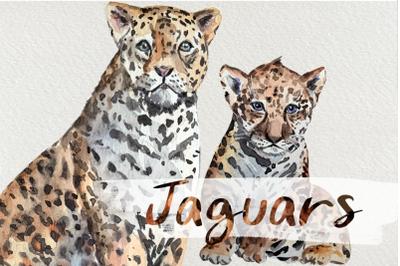 Watercolor Jaguars Clip Art