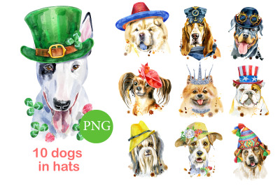 Watercolor dogs in hats
