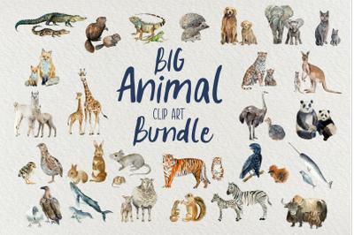 Big Animal Clip Art Bundle