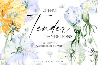 Watercolor floral clipart Dandelions png, Meadow flowers clipart